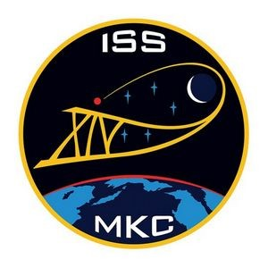 ISS NASA Temporary Tattoo