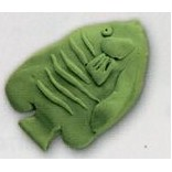 Tropical Fish Stock Shape Eraser